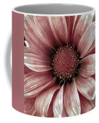 Daisy Daisy Blush Pink Coffee Mug