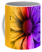 Daisy Daisy Yellow To Purple Coffee Mug