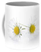 Daisy Flowers Isolated Coffee Mug