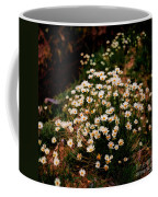 Daisy - Give Me Your Answer Do Coffee Mug
