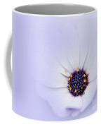 Daisy In The Mist Coffee Mug