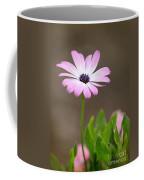 Daisy Mae Coffee Mug