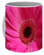 Daisy Pink Coffee Mug