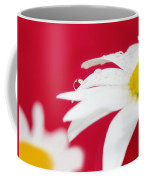 Daisy Reflecting On Red V2 Coffee Mug