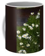 Daisy Splendor Coffee Mug