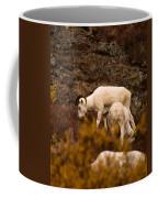 Dall Sheep Grazing Coffee Mug