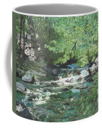 Dam Site Coffee Mug
