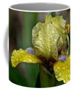Damp Bluebeard Coffee Mug