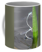 Damselflies Mating Coffee Mug