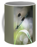 Damselfly On Little River  Coffee Mug