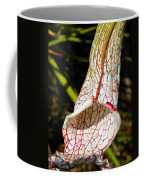 Dana's Delight Carnivorous Pitcher Plant Coffee Mug