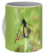 Dance Of The Dragonfliesd Coffee Mug