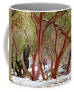 Dancing Manzanitas On The Hillside In Park Sierra-california Coffee Mug
