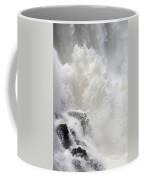 Dancing Waters Coffee Mug