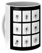 Dandelion 3 Coffee Mug