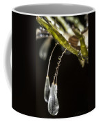 Dandelion Tears Coffee Mug