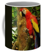 Danse Macaw Coffee Mug