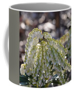 Dappled Pieris Japonica Coffee Mug
