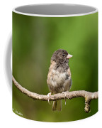 Dark Eyed Junco Coffee Mug