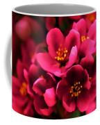 Dark Spring Dreams Coffee Mug