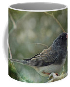 Darkeyed Junco  Coffee Mug