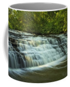 Darnley Cascade Coffee Mug