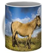 Dartmoor Pony Coffee Mug