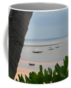 Fannie Bay 1.1 Coffee Mug
