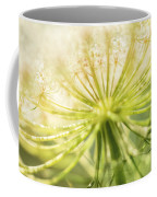 Daucus Carota - Queen Anne's Lace - Wildflower Coffee Mug