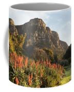 Dawn At Kirstenbosch Coffee Mug