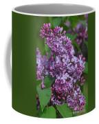 Dawns Lilacs Coffee Mug