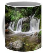 Day 1000 - Lower Forest Glen Falls Coffee Mug