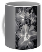 Day Lilies In Black And White Coffee Mug by Adam Romanowicz