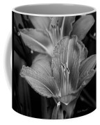 Day Lilies In Black And White Coffee Mug