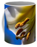 Day Lilly Macro With Sky Background Coffee Mug by Sven Brogren