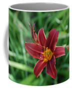 Day Lily 3648 Coffee Mug