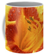 Day Lily In The Rain - 688 Coffee Mug
