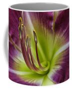 Day Lily Intimate Coffee Mug