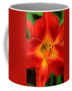 Day Lily1 Coffee Mug