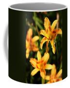 Daylillies0107 Coffee Mug