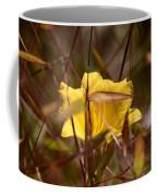 Daylily In Autumn Coffee Mug