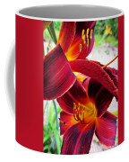 Daylily Twice Coffee Mug