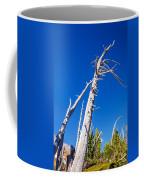 Dead White Trees Coffee Mug