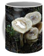 Deadly Beauty 1 Coffee Mug