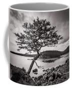 Deception Pass Wa Coffee Mug