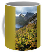Deciduous Beech Or Fagus In Colour Coffee Mug