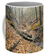 Deciduous Forest With Ravines Coffee Mug