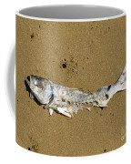 Decomposing Dead Fish Carcass Washed Ashore Coffee Mug