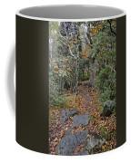 Deep In The Woods Coffee Mug by Susan Leggett