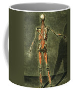 Deep Muscular System Of The Back Coffee Mug